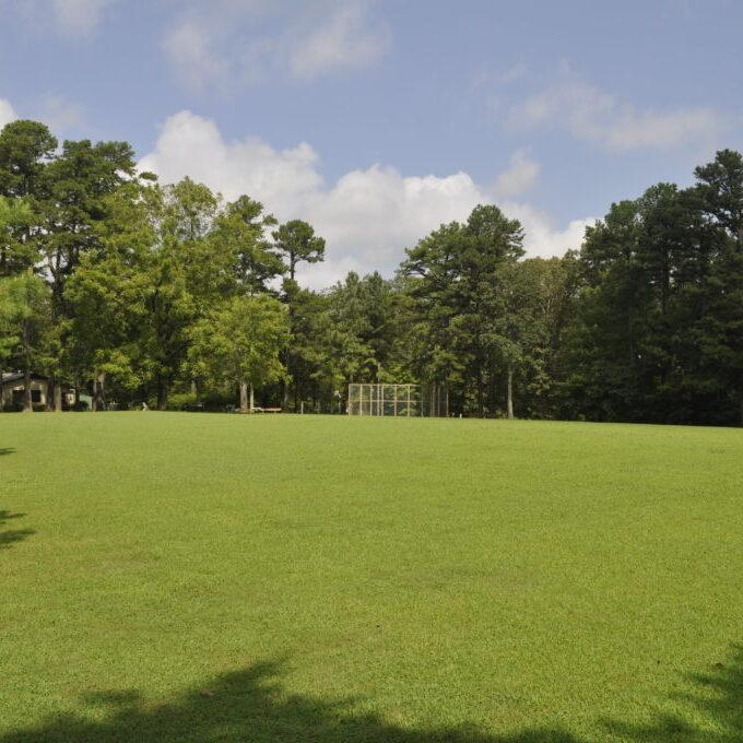 open-fields
